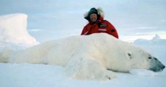 Ekspertene slår alarm: Nå ØKER organisert troféjakt av isbjørn